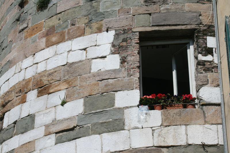 Lucca window